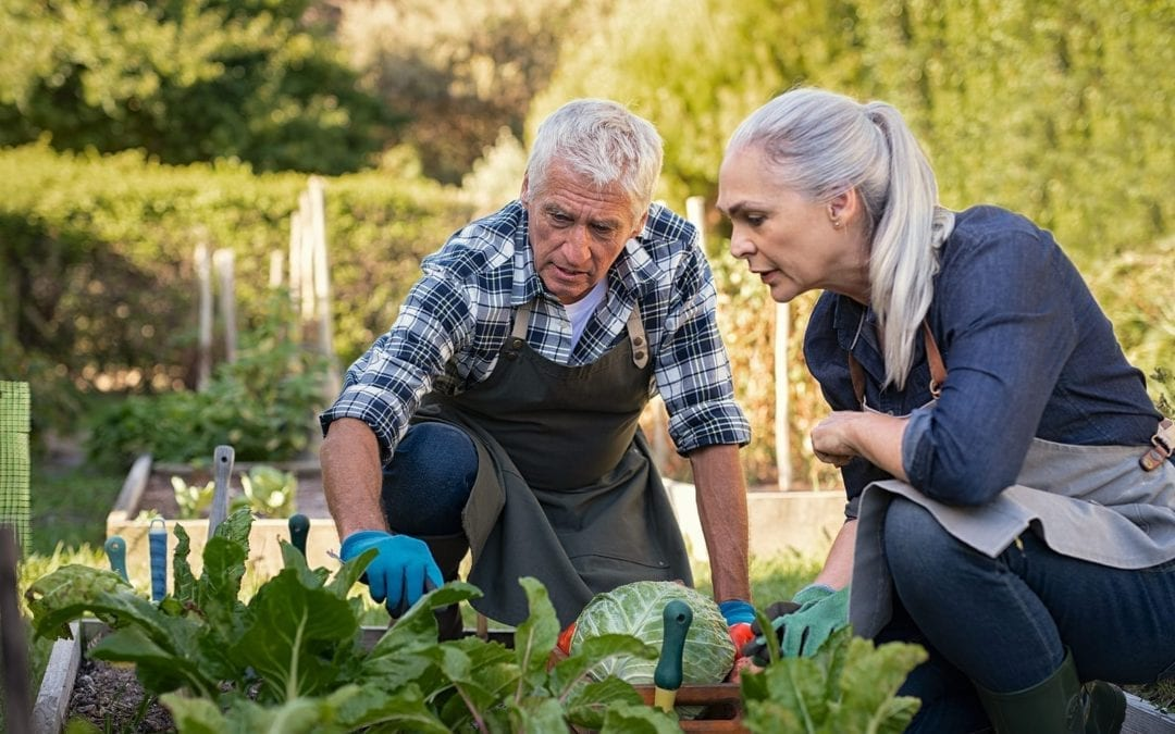Warm Weather Tips for Hearing Aid Users